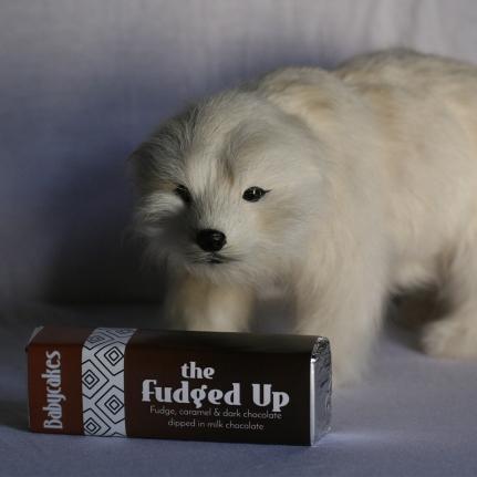 polarbear fudged up